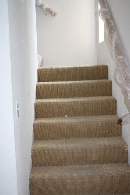 Stairway to hell....old disgusting carpet, filthy white walls