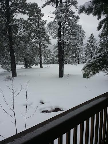 snow in jerrys back yard in may 2015