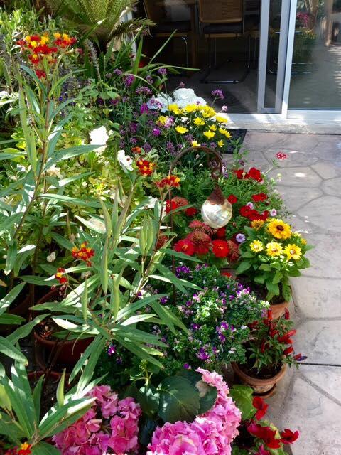 lisas-garden