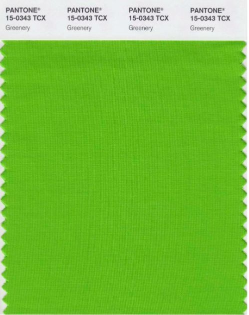 design-color-of-the-year-2017-greenery-pantone-15-0343