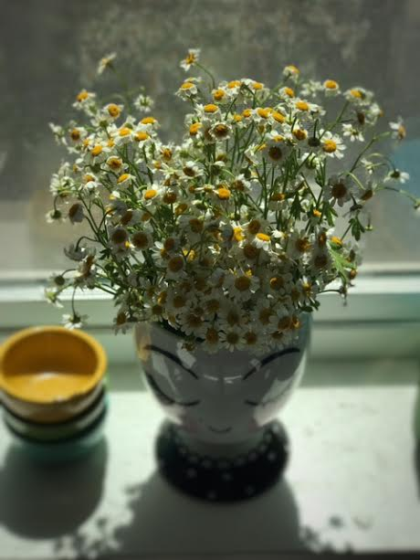 jenna pic of vase with daisies in her kitchen window