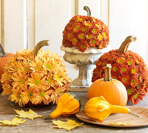 pumpkin covered mums from bhg